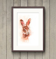 WILL ELLISTON Fine Art Print My Original Hare's Head Watercolour Painting Signed
