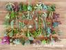 20 Assorted/15 Variety Cuttings Succulent Sedum Crassula Collection