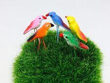 5 Pcs Miniature Dollhouse Fairy Garden Accessories Tiny Mix fancy bird