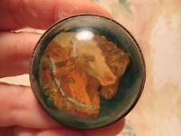 RARE Antique 1800's 3 Horse Heads Glass Domed Horse Bridle Rosette