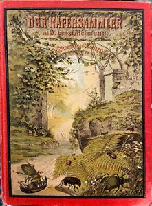 Der Käfersammler von Ernst Hofmann um 1900  -Geschäftsaufgabe-