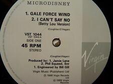 MICRODISNEY - GALE FORCE WIND