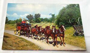 Postcard Butterfield Stage Line Knott's Berry Farm Souvenir Unposted