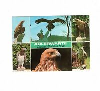 AK Ansichtskarte Adlerwarte Berlebeck im Teutoburger Wald