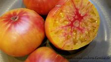 10+ HILLBILLY Tomatensamen Fleischtomate Russland Beefsteaktomate fruchtig süß