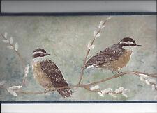 WALLPAPER BORDER BIRD ON BRANCH FLY CATCHER ? NEW ARRIVAL BIRDS ANIMAL WILDLIFE