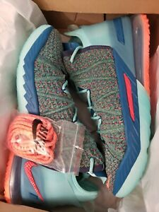 """Nike Lebron 18 """"We Are Family"""" CQ9283-300, Size 12 100% Authentic, SHIPS ASAP!"""