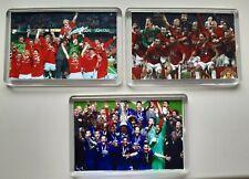 More details for 3x manchester united man utd champions europa league football fridge magnet