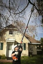 Pole Chainsaw Pruner Gas Powered 25cc 8 Inch Bar Tree Trimmer Cut Limbs Branches