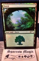 1x Forest FOIL - Mark Poole 'Shooting Star Land' - M-NM - Gift Pack 2017