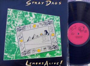 Stray Dags ORIG OZ LP Lemons alive! EX '83 EWE Wave SD0157 New wave Indi Rock