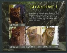 Guyana 2017 MNH Jaguarundi 4v M/S Big Cats Wild Animals Stamps