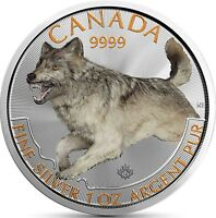 Predator Serie 2018 Wolf Kanada 5 Dollar Silbermünze Prägefrisch in Farbe