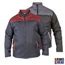 D555 Mens Branded Contrast Panel Lightweight Padded Jacket Sizes 3XL 4XL 5XL 6XL