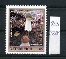 Österreich PM personalisierte Marke Philatelietag STEYR GLEINK 8133829 **