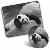 Mouse Mat & Coaster Set - BW - Lazy Panda Bear Wild Animals  #40991