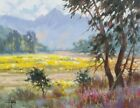 """TOM HAAS painting 'Season of Color' oil 11""""x14"""" Arizona flowers mountains clouds"""