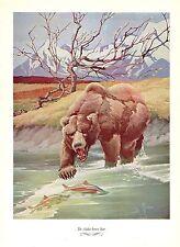 "1957 Vintage FRANCIS LEE JAQUES ""ALASKA BROWN BEAR"" Color Art HUNTING Lithograph"
