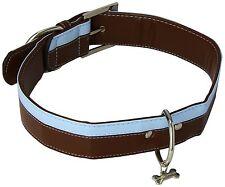 Doggy Things 2-Stripe DOG PUPPY 50 COLLAR AND LEASH Lead SET MEDIUM BLUE / BROWN