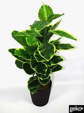 Künstlich Groß 110cm Gummi Ficus - N00010