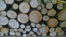 Cherry Wood Logs for BBQ/Grilling/Wood Smoking! Arts and Crafts14lbs-17lbs