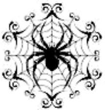 20 water slide nail art Halloween  black spider web with spider 3/8  Trending