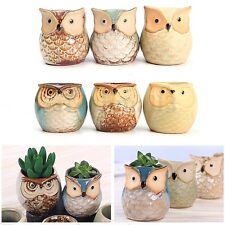 6pcs Set Mini Owl Plant Pots Flower Succulent Pottery Ceramic Ornament Decor