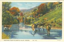 Willamette Valley OR Cows in the Creek 1942 Greetings from Willamette Valley
