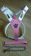 Leather Harnesses+chain  Staffordshire,Bull Terrier,English Bull pink n white