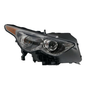 IN2503144 Head Lamp Assembly Passenger Side