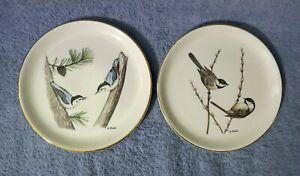 decorative plate Bird Plate Vintage Bird Illustration 10 plate Long-tailed Sylph bird design Melamine Plate Dinner Plate