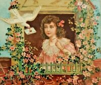 Sweet Birthday Girl Dove Delivered Letter Germany Postcard Gold Embossed