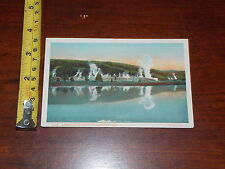 Rare Vintage Postcard Old Upper Geyser Basin Yellowstone Park Hayes Photo
