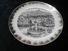 Collectors Plate - View of Braunlage (Oberharz), Germany.