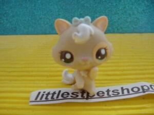 ORIGINAL Littlest Pet Shop 2555 Cutest pets baby kitten cat