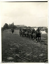 British Army Indian Corps Signal Cable Horse 1915 World War 1 5x4 Repro Photo bl