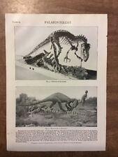 Ichthosaur Allosaurus Palaeontology Jurassic antique picture 1910 Rare Dinosaurs