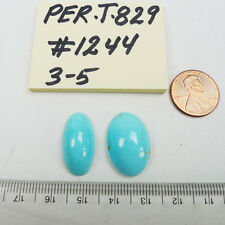 Persian Turquoise 100% Natural 2 Oval Cabochon 28 TCW