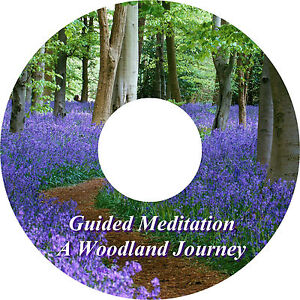 Guided Meditation A Woodland Journey & Music Track On 1 CD Relaxation Sleep Aid