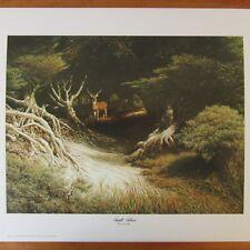 """Larry Dyke Sunlit Silence Print 16"""" x 20"""" Christian Texas Artist 1979 Buck Deer"""