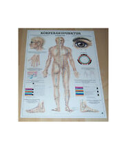 NEU Anatomie Lehr Poster Körperakupunktur / Akupunktur