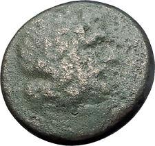PELLA in MACEDONIA 148BC RARE R1 Authentic Ancient Greek Coin ZEUS & BULL i61465