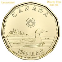 2010 Canada Loonie Graded as Brilliant Uncirculated From Original Roll