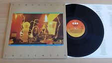 ROMEO VOID - INSTINCTS - LP 33 GIRI+LYRICS INNER SLEEVE - UK PRESS