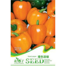 FD1283 Orange Sweet Pepper Seed Vegetable Seeds *1 Pack 8 Seeds* Free Shipping✿