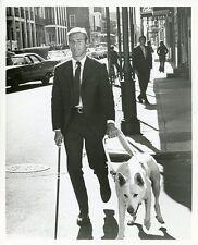 JAMES FRANCISCUS SEEING EYE DOG WALK DOWN STREET LONGSTREET 1971 ABC TV PHOTO