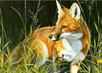 LMOP86 100% hand-painted MODERN OIL PAINTING on CANVAS wall ART;FOX animal
