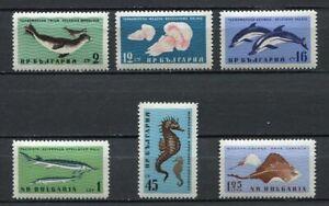 33452) Bulgaria MNH 1961, Black Sea Animals 6v Fish
