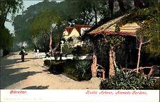Gibraltar ~1900 Rustic Arbour Alameda Gardens Verlag Ferrary Purger ungelaufen