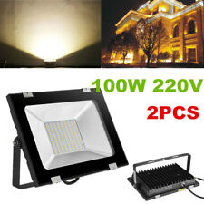 2X 100W LED Flood Light Outdoor Garden Landscape Yard Wall Spot Ceiling Lamp SMD
